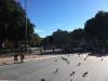 Gita a Barcellona (Spagna) dal 03 al 07-01-17 (39)
