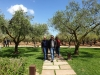 Gita a Sambuca di Sicilia 34