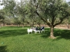 Gita a Sambuca di Sicilia 56